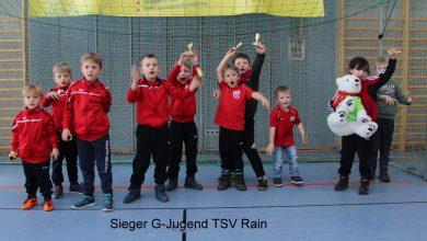 Bild von Hallenfußballturnier der G-, F- und E-Jugend
